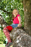 Little girl climbed on tree Stock Photography