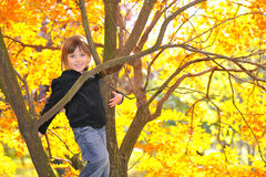 Little girl climbed on tree stock photo
