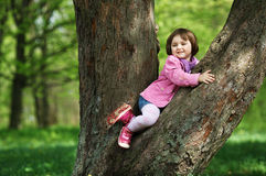 Little girl climbing tree in the park Stock Photos