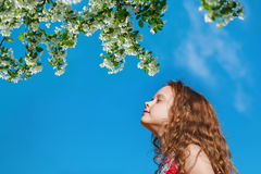 Little girl closed her eyes and breathes the fresh air in the pa Royalty Free Stock Photos