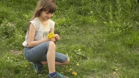 Little girl collects a bouquet of dandelions in a meadow. child smelling bouquet of dandelions