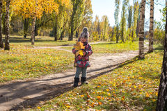 Little girl with colorful autumn leaves Royalty Free Stock Images