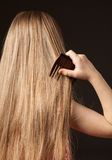 Little girl combing her beautiful long hair Royalty Free Stock Image