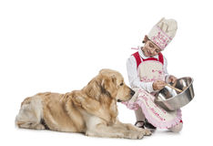Little girl cooking for her dog Royalty Free Stock Photography