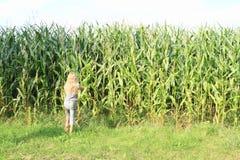Little girl in corn field Royalty Free Stock Photo