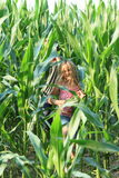 Little girl in corn field. Frightened girl running in green corn field out from a boy Stock Image