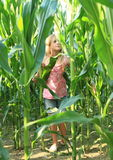 Little girl in corn field Stock Photography