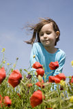Little girl and corn poppy Royalty Free Stock Image