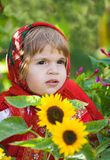 Little girl costs among a  sunflowers Stock Image