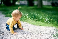 Free Little Girl Crawling Along Gravel Path In Green Park Royalty Free Stock Photography - 221470687