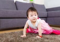 Little girl crawling Stock Photos
