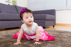 Little girl creeping on carpet Stock Photos
