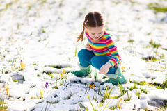 Little girl with crocus flowers under snow in spring stock photo