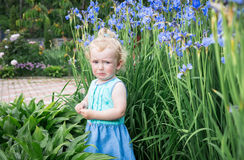 Little girl is crying and very sad. Royalty Free Stock Photos