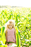Little girl with curly blond hair and pink dress in a cornfield. Little girl with curly blond hair and pink dress in acornfield Royalty Free Stock Photo