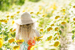 Little girl with curly white hair in a field of sunflowers. Girl in a straw hat and sarafan. Little girl with curly white hair in a field of sunflowers. Girl in Stock Photo