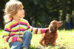 Little girl with dachshund sits on grass Stock Photos