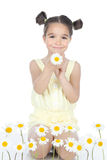 Little girl with daisies on white Royalty Free Stock Photography