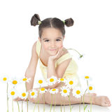 Little girl with daisies on white Stock Image