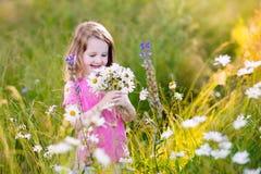Little girl in daisy flower field Royalty Free Stock Photos