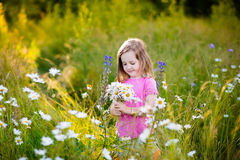 Little girl in daisy flower field Royalty Free Stock Images