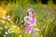 Little girl in daisy flower field Royalty Free Stock Photography