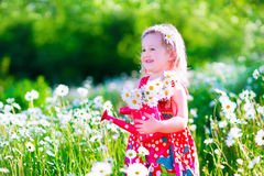 Little girl in daisy flower field Stock Photography