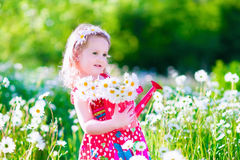 Little girl in daisy flower field Royalty Free Stock Image