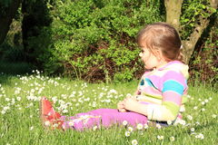 Little girl with daisy flowers Stock Images