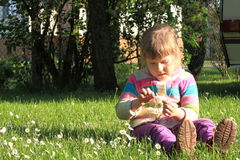 Little girl with daisy flowers on a grass Royalty Free Stock Photography