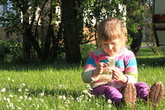 Little girl with daisy flowers on a grass Royalty Free Stock Image
