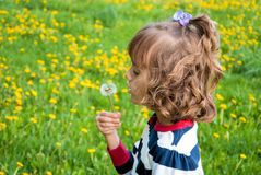 Little girl with dandelion. Cute little girl on the lawn blowing on a dandelion Royalty Free Stock Image