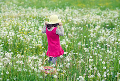Little girl on the dandelion field Royalty Free Stock Images