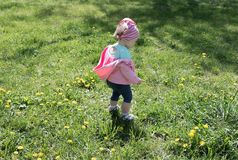 Little girl on dandelion lawn royalty free stock photography