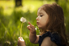 Little girl with dandelion Royalty Free Stock Photos