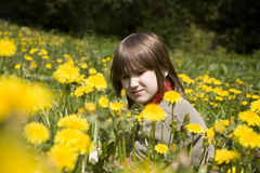 Little girl in the dandelions Stock Photos