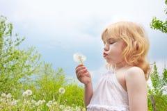 Little girl with dandelions Stock Photo