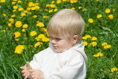 Little girl with dandelions Royalty Free Stock Photo