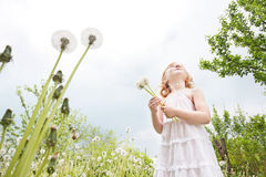 Little girl with dandelions. Outdoor Royalty Free Stock Photography