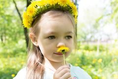Little girl with dandelions wreath on her head smell dandelion.  Royalty Free Stock Images