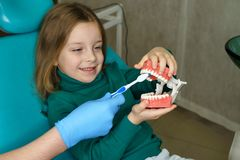 Little girl in dental clinic. Dentist explains rules of brushing the teeth of little girl holding toothbrush. Girl holding mock jaw stock image