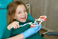 Little girl in dental clinic. Dentist explains rules of brushing teeth to little girl, holding mock jaw. Girl holding toothbrush stock photos