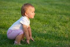Little girl discovering the meadow Royalty Free Stock Images