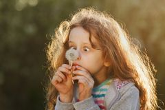Little girl does not trust mowing looks at a dandelion. In a park in the spring Stock Photo