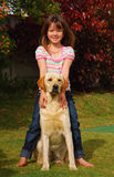 Little girl with dog. A sitting male Labrador Retriever dog with his owner, a little happy Caucasian girl, standing behind him outdoors in the yard Stock Photos
