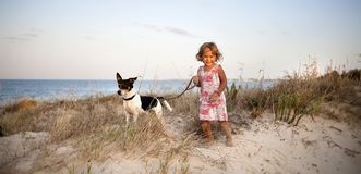 Little Girl with a Dog on the Beach stock photo