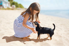 Little girl and dog on the beach in sunny summer day Stock Images