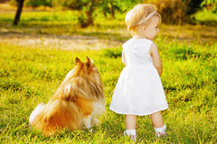 Little girl and dog Stock Photos