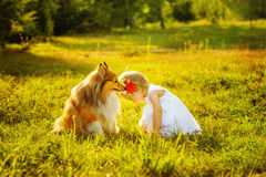 Little girl and dog Stock Images