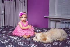Little girl and dog Royalty Free Stock Image